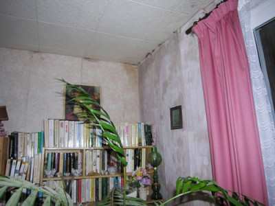 Dégats de l'humidité dans la maison
