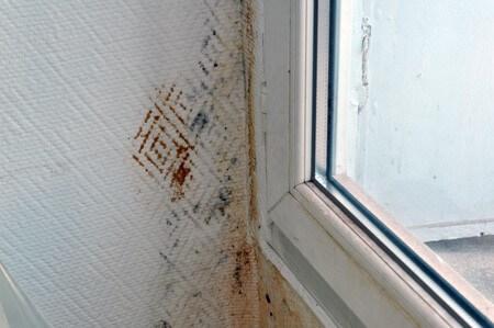 humidite-murs-450x299